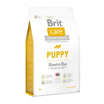BRIT Care Puppy S-XL, Miel cu Orez, hrană uscată câini junior, 3kg