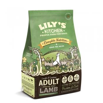 Lily's Kitchen Caine Adult cu Miel, 1 kg imagine