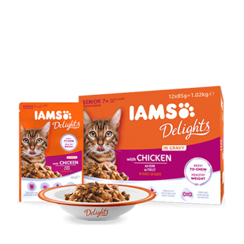 Pachet Iams Delights Cat Senior In Gravy, 12x85 g