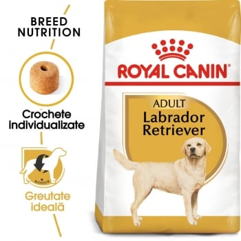 Royal Canin Labrador Retriever Adult, 12 kg