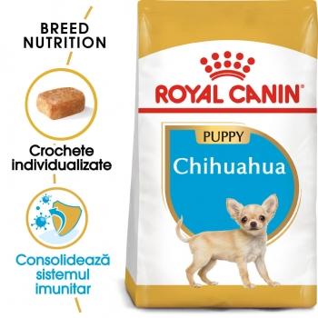 Royal Canin Chihuahua Junior, 1.5 kg