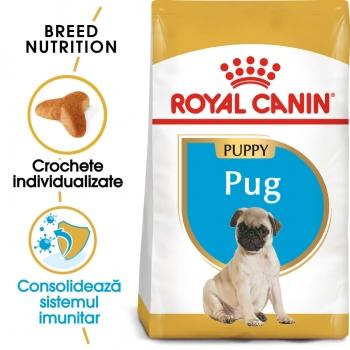 Royal Canin Pug (Mops) Junior, 1.5 kg