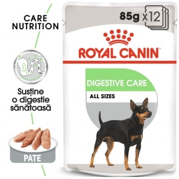 Pachet Royal Canin CCN Digestive Care Loaf, 12 X 85 g
