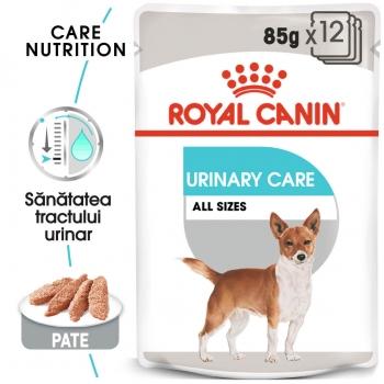 Pachet Royal Canin CCN Urinary Loaf, 12 X 85 g