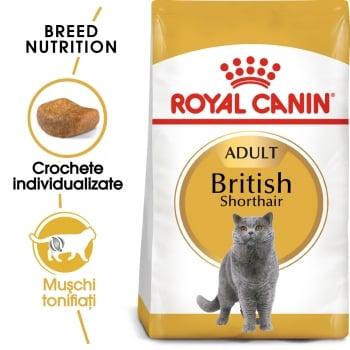 Royal Canin British Shorthair Adult, hrană uscată pisici, 10kg