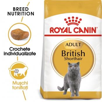 Royal Canin British Shorthair Adult, pachet economic hrană uscată pisici, 2kg x 2