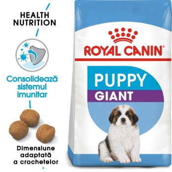 Royal Canin Giant Puppy, hrană uscată câini junior, etapa 1 de creștere, 3.5kg