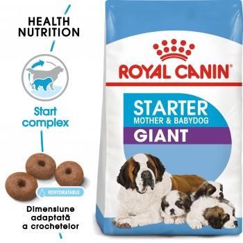 Royal Canin Giant Starter Mother & BabyDog, mama și puiul, hrană uscată câini, 15kg