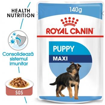 Royal Canin Maxi Puppy, plic hrană umedă câini junior, (în sos), 140g