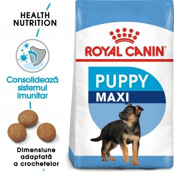 Royal Canin Maxi Puppy, pachet economic hrană uscată câini,15kg x 2