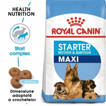 ROYAL CANIN Maxi Starter Mother & BabyDog, mama și puiul, hrană uscată câini, 1kg