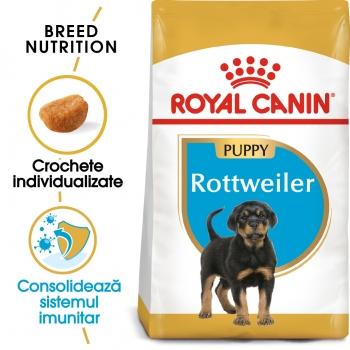 Royal Canin Rottweiler Puppy, hrană uscată câini juniori, 12kg x 2 imagine