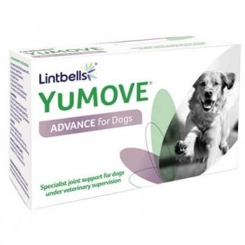 Suplimente Nutritive Pentru Caini Lintbells Yumove Advance, 120 Tablete imagine