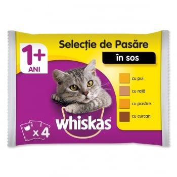 WHISKAS Selecții Pasăre, 4 arome, pachet mixt, plic hrană umedă pisici, (în sos), 100g x 4