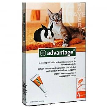 Advantage Pisica/Iepure 40, < 4 kg, 4 pipete imagine