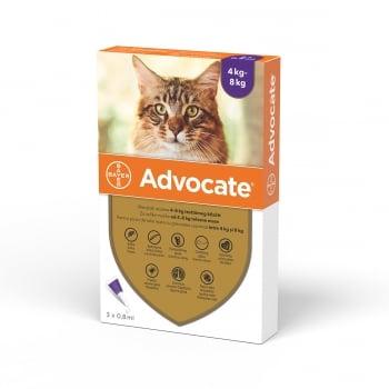 Advocate Pisica, 4-8 kg, 3 pipete