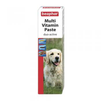 Supliment Nutritiv Beaphar MultiVitamin Paste Duo Active 100 g