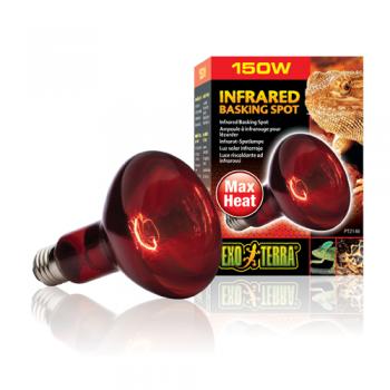 Bec Infrared Basking Spot PT 2141 100 W