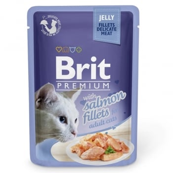 Brit Cat Delicate Salmon in Jelly 85 g