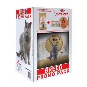 Kit Breed Royal Canin British Shorthair, 2 kg