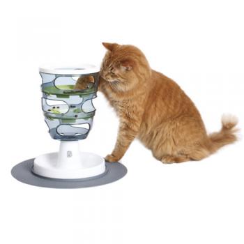 Cat Senses Food Circuit
