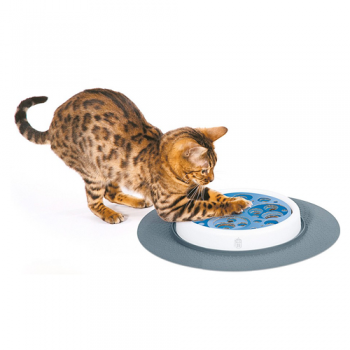 Cat Senses Scratch Pad