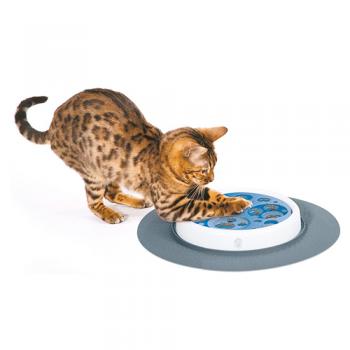 Cat Senses Scratch Pad