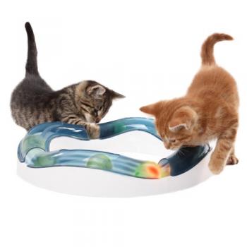 Cat Senses Speed Circuit