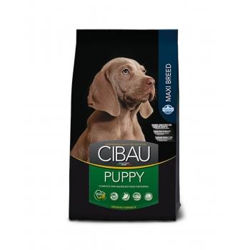 Cibau Puppy Maxi 2.5 Kg imagine