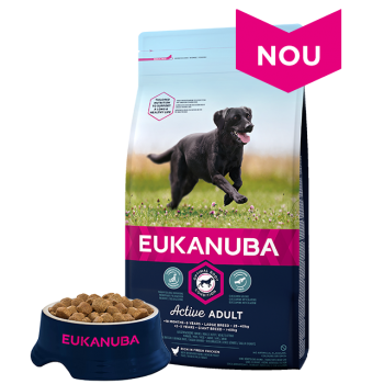 Eukanuba, Adult Large cu Pui, 12 kg + 2 kg