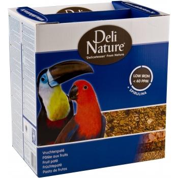 Deli Nature Pate Fructe pentru Pasari 1kg imagine