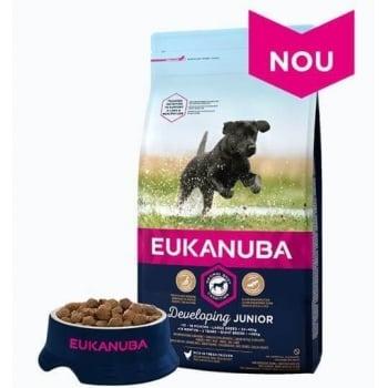 Eukanuba, Junior Large cu Pui, 12 kg imagine