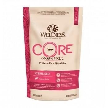 Hrana Uscata Wellness Core Dry Sterilised cu Somon, 300 g