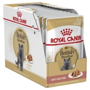 Pachet Royal Canin British Shorthair Adult, 24 x 85 g imagine