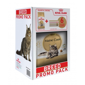 Kit Breed Royal Canin Main Coon, 2 kg