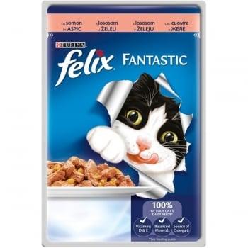 Felix Fantastic cu Somon, Plic 100 g