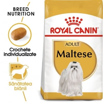 Royal Canin Bichon Maltese Adult, 1.5 kg