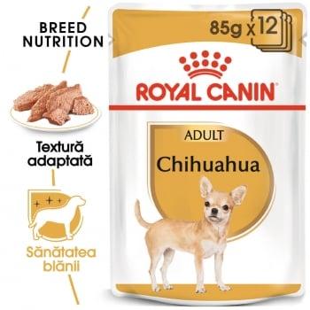 Pachet Royal Canin Chihuahua Adult, 12 x 85 g