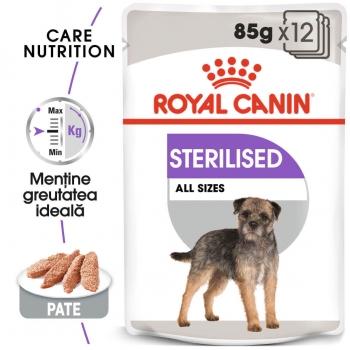 Pachet Royal Canin CCN Sterilized Loaf, 12 X 85 g