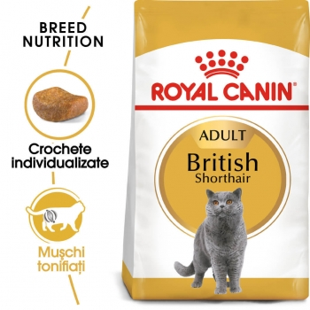 Royal Canin British Shorthair Adult, 400 g