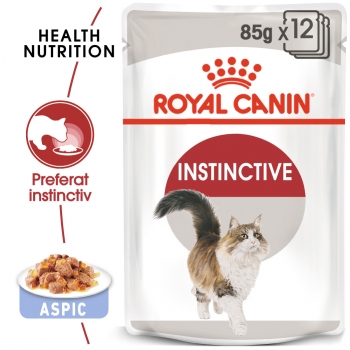 Pachet Royal Canin Adult Instinctive in Jelly 24 x 85 g