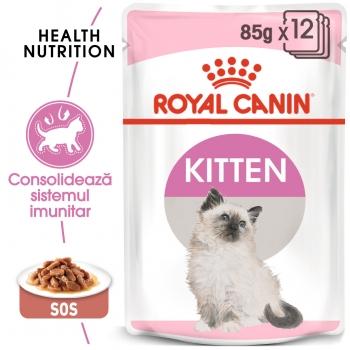 Pachet Royal Canin Kitten Instinctive In Gravy, 12 x 85 g