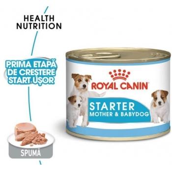 Royal Canin Mini Starter Mousse 195 g