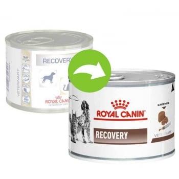 Royal Canin Recovery Canine/Feline, 195 g