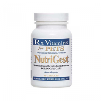 Rx Vitamins Nutrigest, 90 Tablete