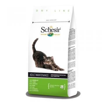 Schesir Cat Adult Maintenance Miel 400 g
