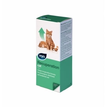 Viyo Recuperation Cat x 1 fl