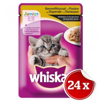 Pachet Whiskas Junior Pasare 24x100 g