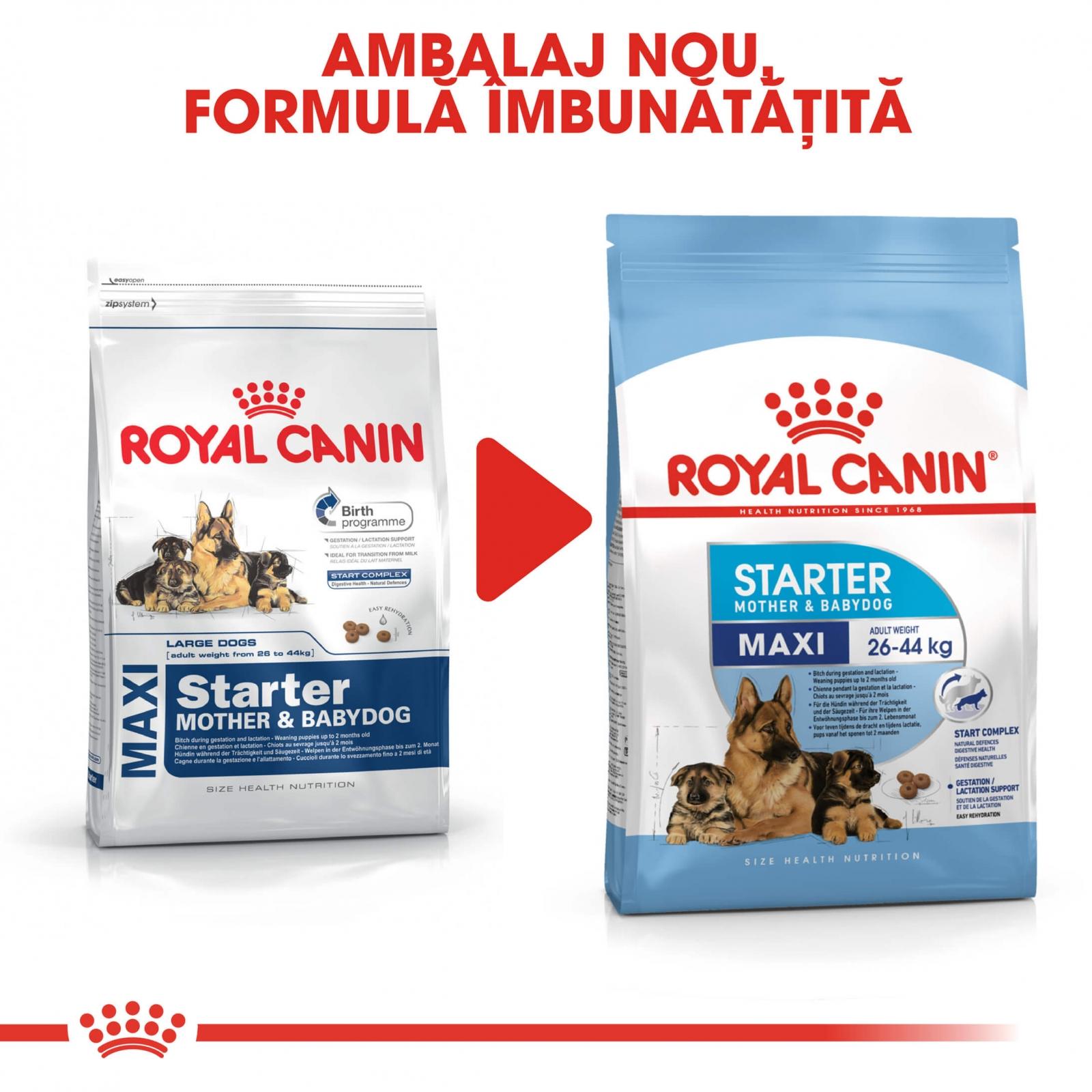 royal canin maxi starter 4 kg. Black Bedroom Furniture Sets. Home Design Ideas