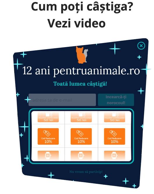 Video Campanie Aniversara